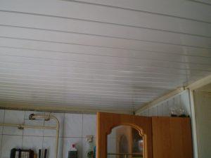 Пластиковые потолки на кухне: фото интересных вариантов и полезные советы